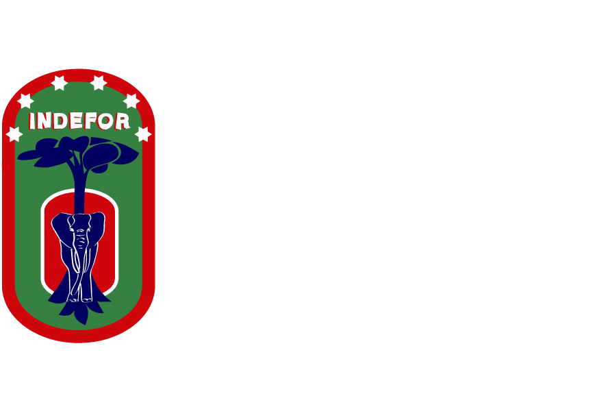 GNQ Logo